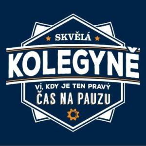 Plecháček - Kolegyně